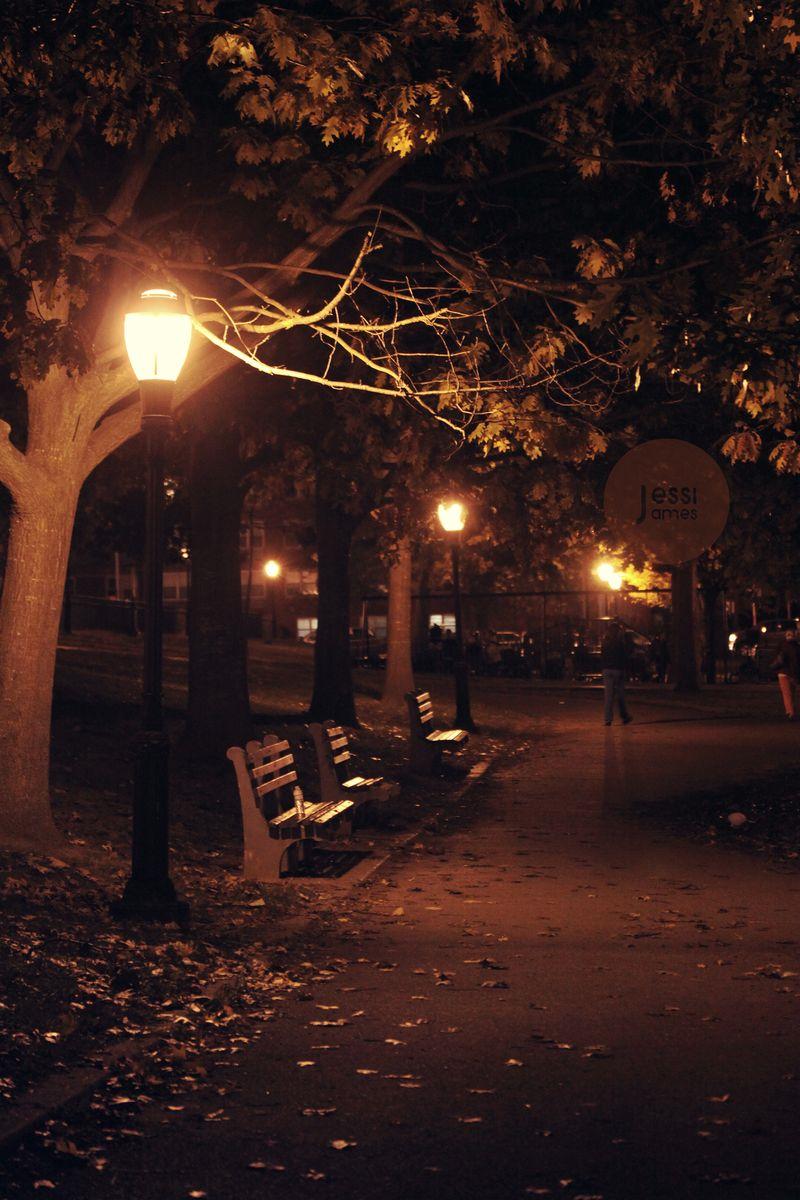 Crafty Crookshanks: Brooklyn November Nights