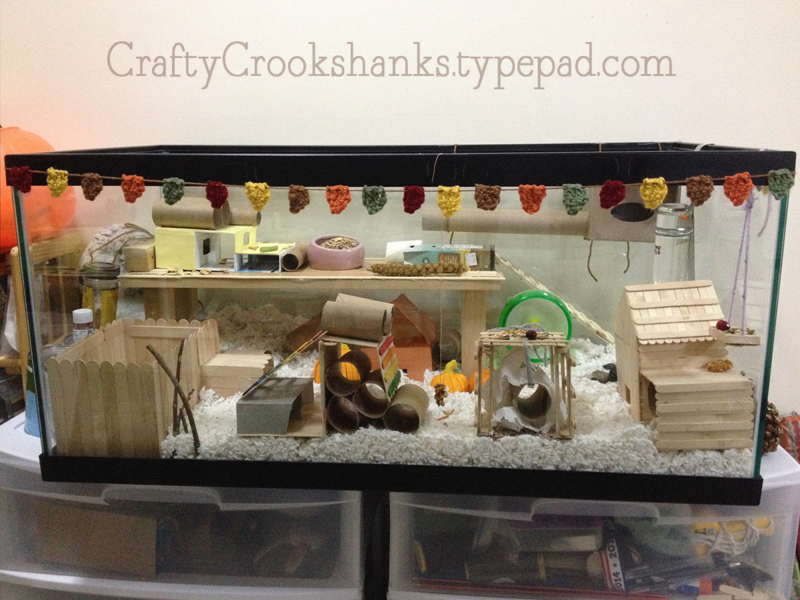 Crafty Crookshanks: Keeping Your Hamster Entertained